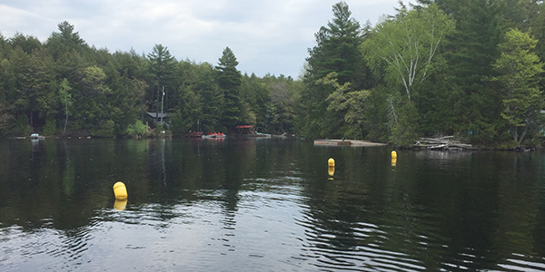 buoys in water