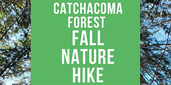 Catchacoma Forest Fall Nature Hike graphic